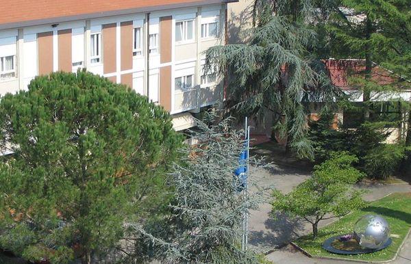 Sophia University Institute
